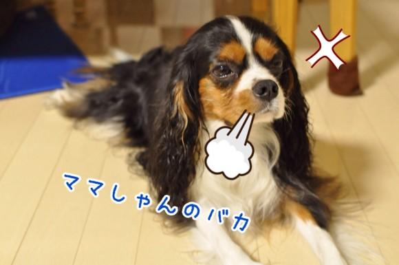 fc2blog_2014070822063430b