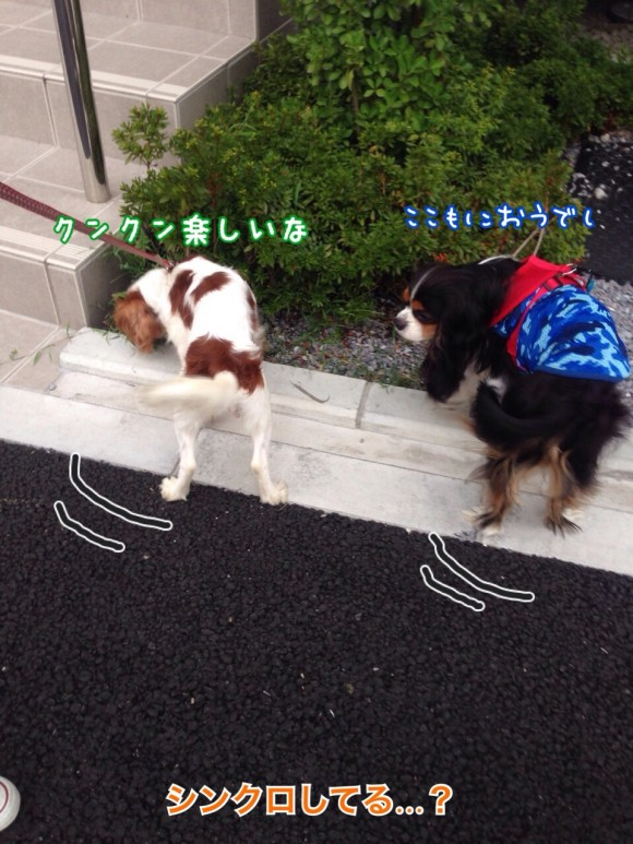 fc2blog_2014082700430702a