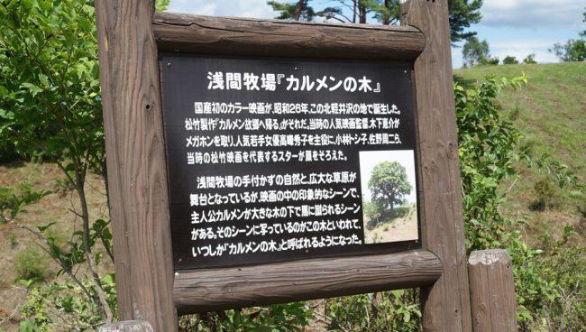 浅間牧場 浅間高原 キャバリア 犬連れ軽井沢 北軽井沢