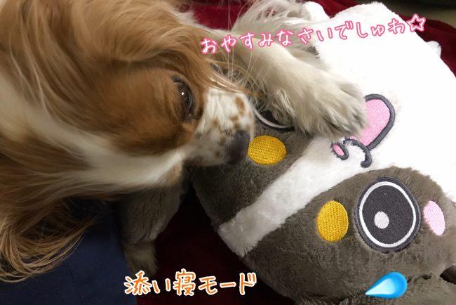 おやすみなさいでしゅわ☆/添い寝モード