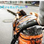 雨の中、カートで動物病院にGO