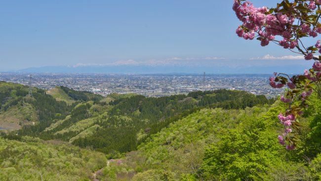 倶利伽羅峠 犬連れ 富山