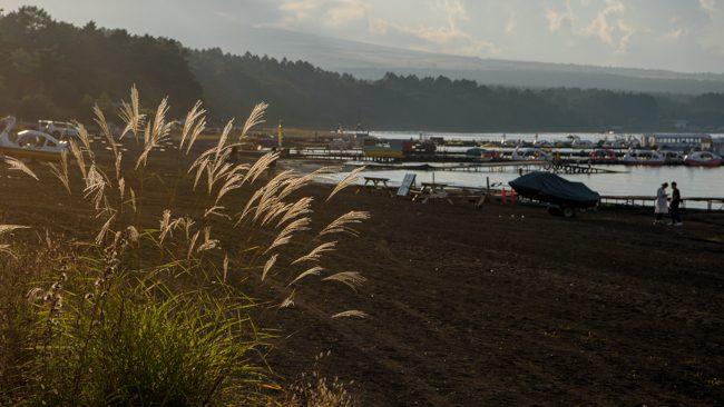山中湖 キャバリア