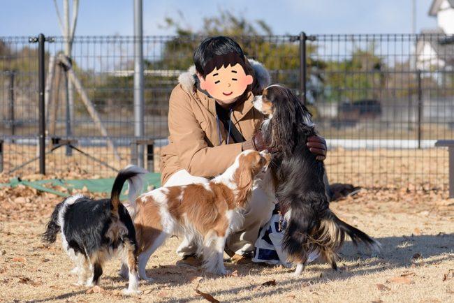 三王山ふれあい公園ドッグラン キャバリア