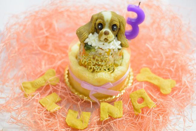 アトリエワフ 犬用誕生日ケーキ
