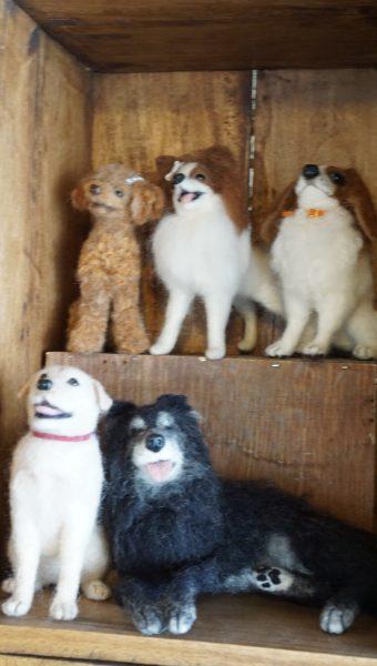 RAIN DOGS レインドッグス ドッグカフェ 羊毛フェルト
