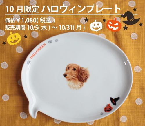 わんコレ 10月限定 ハロウィン 吹き出し皿