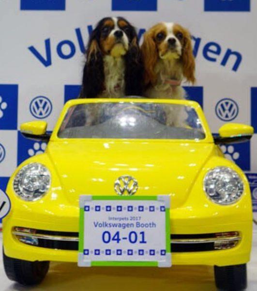 Interpets2017 Volkswagen