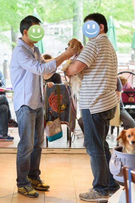 DOG DEPT GARDEN 軽井沢店 キャバリア