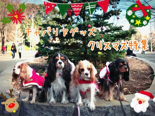 キャバリアグッズ クリスマス特集 愛犬クリスマスグッズ