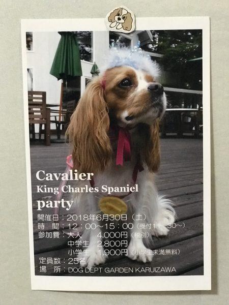 キャバリアパーティ20180630軽井沢
