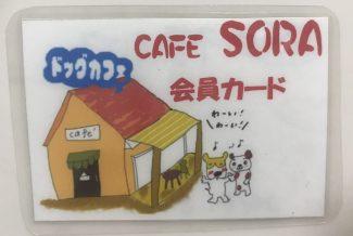 cafe sora 会員カード 表面だけ
