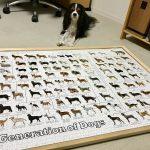 犬の系統図 ジグソーパズル
