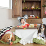 犬と赤ちゃんお正月写真