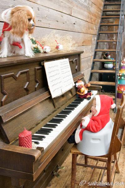 犬と赤ちゃんのピアノサンタ写真